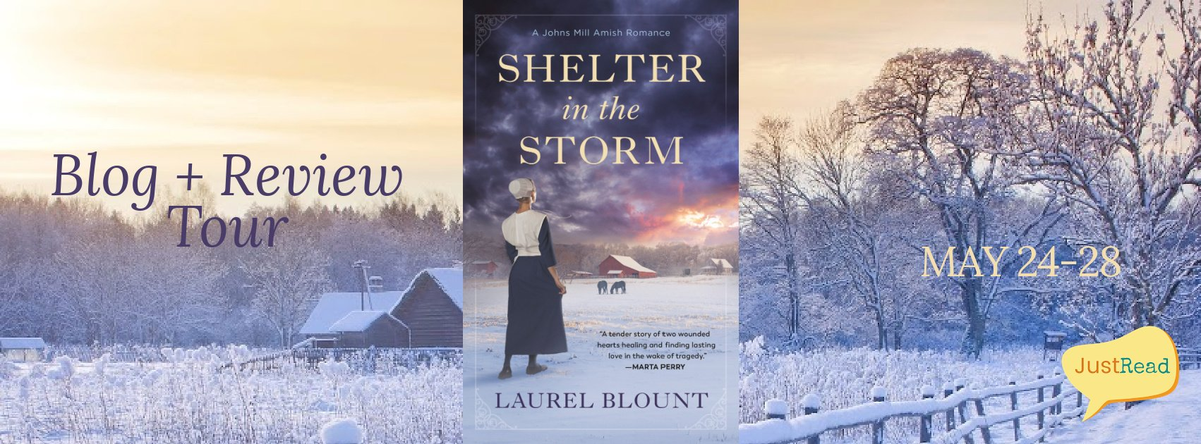 Shelter in the Storm JustRead Blog + Review Tour