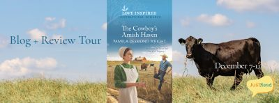 The Cowboy's Amish Haven JustRead Blog + Review Tour